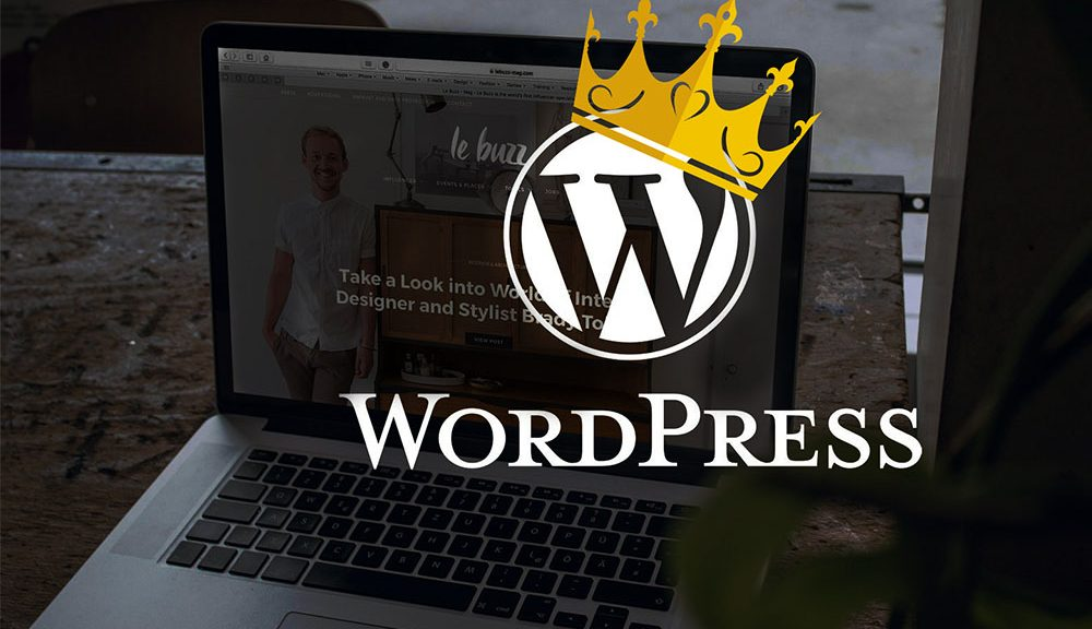 Why WordPress is a King among all CMS?